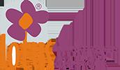 2 SAKSI ORKİDE ( 4 DAL) | Alsancak Çiçekçi Lotus Çiçekçilik Alsancak Çiçek Siparişi | Lotus Çiçekçilik