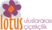 Sepet Arajman | Alsancak Çiçekçi Lotus Çiçekçilik Alsancak Çiçek Siparişi | Lotus Çiçekçilik