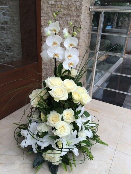 Beyaz orkide beyaz gül beyaz kazablanka