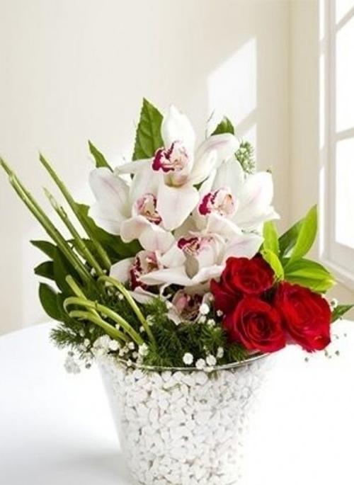 Vazoda gül ve orkidenin ahengi